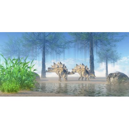 A pair Stegosaurus walking near a pond on a Jurassic misty morning Poster