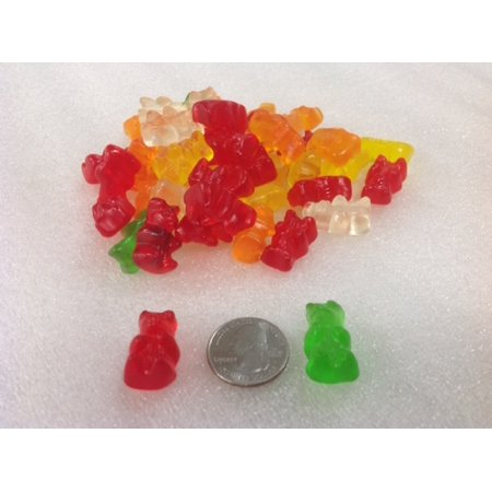 Sugar Free Gummi Bears part Stevia 2 pounds bulk sugar free gummy candy - Lifesavers Gummies
