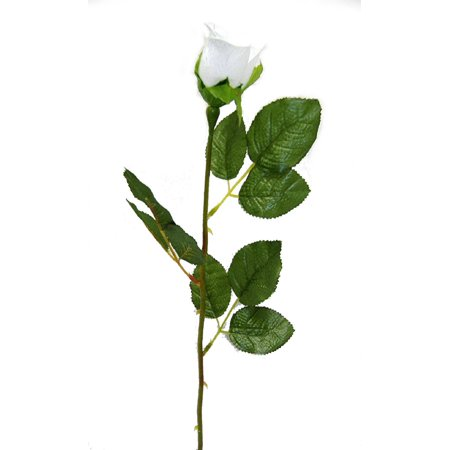 Set of 12 Long stem rose bud ()