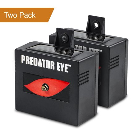 Aspectek l 4600sq ft l Predator Eye Nighttime Outdoor Solar Animal Repeller - 2 Pack, Waterproof, Repellent Predator Light Keeps Nocturnal Animals Away Such as Rat, Mouse, Cat, Bird,