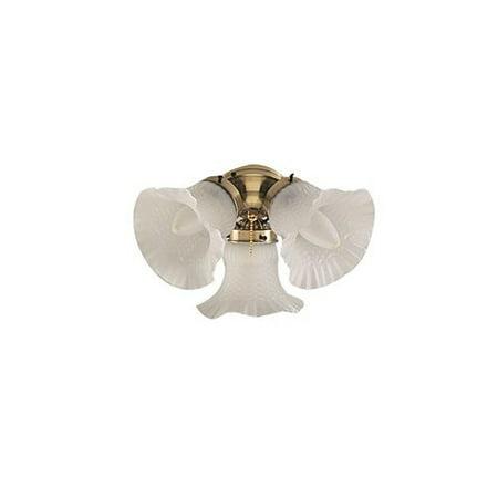 Bala Ceiling Fans 3 Light Branched Ceiling Fan Light Kit