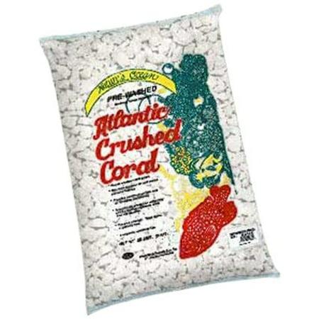 Worldwide Imports Awwa1035 Atlantic 4-Crush Coral 20-Pound (Pack of 1) ()