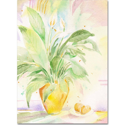 "Trademark Fine Art ""The Peace Lily"" Canvas Art by Sheila Golden"