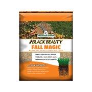 2PK-3 LB Fall Magic Grass Seed A Mixture Of Ryegrass Bluegrass & Fescue Gr