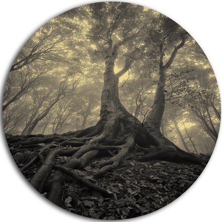 Design Art 'Tree with Big Roots on Halloween' Photographic Print on Metal - Kohler Design Center Halloween