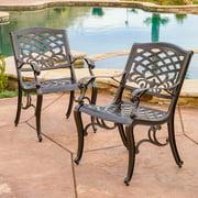 Dakota Cast Aluminum Bronze Outdoor Chair (Set of 2)