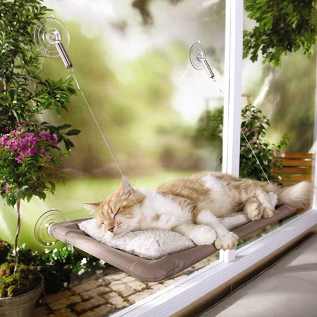 Picture of: Cat Perch Sunny Seat Window Mounted Cat Bed Cat Hammock For Window Providing All Around 360 Sunbath For Cats Walmart Com Walmart Com