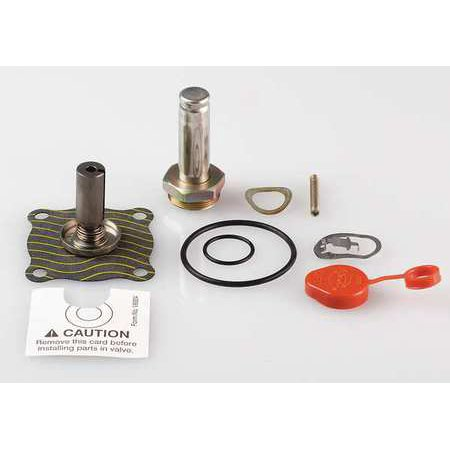 ASCO 302276 Valve Rebuild Kit,With Instructions (Asco Valve)