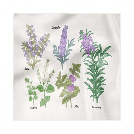 Herb Napkins Set of 4, Botanical Infographic with Sage Melissa Lavender Mint and Rosemary Plants, Silky Satin Fabric for Brunch Dinner Buffet Party, by Ambesonne