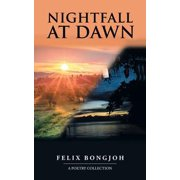 Nightfall at Dawn - eBook