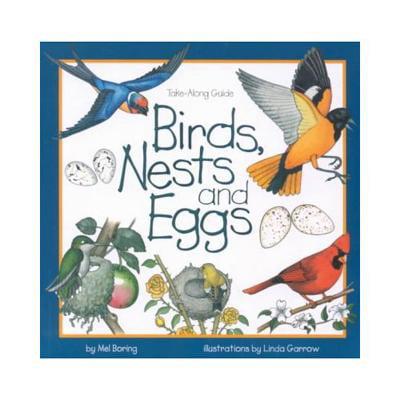 Birds, Nests & Eggs -