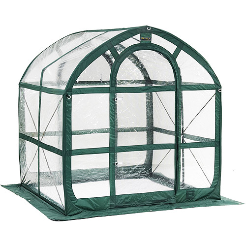 SpringHouse Clear Greenhouse by Overstock