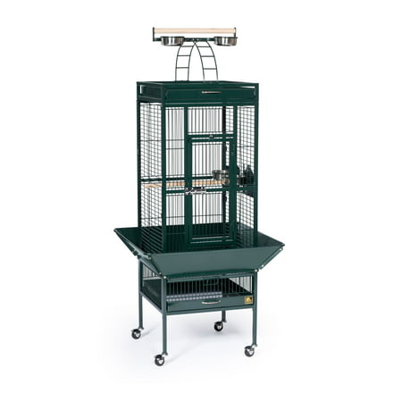 Prevue Select Wrought Iron Cockateil Bird Cage 18
