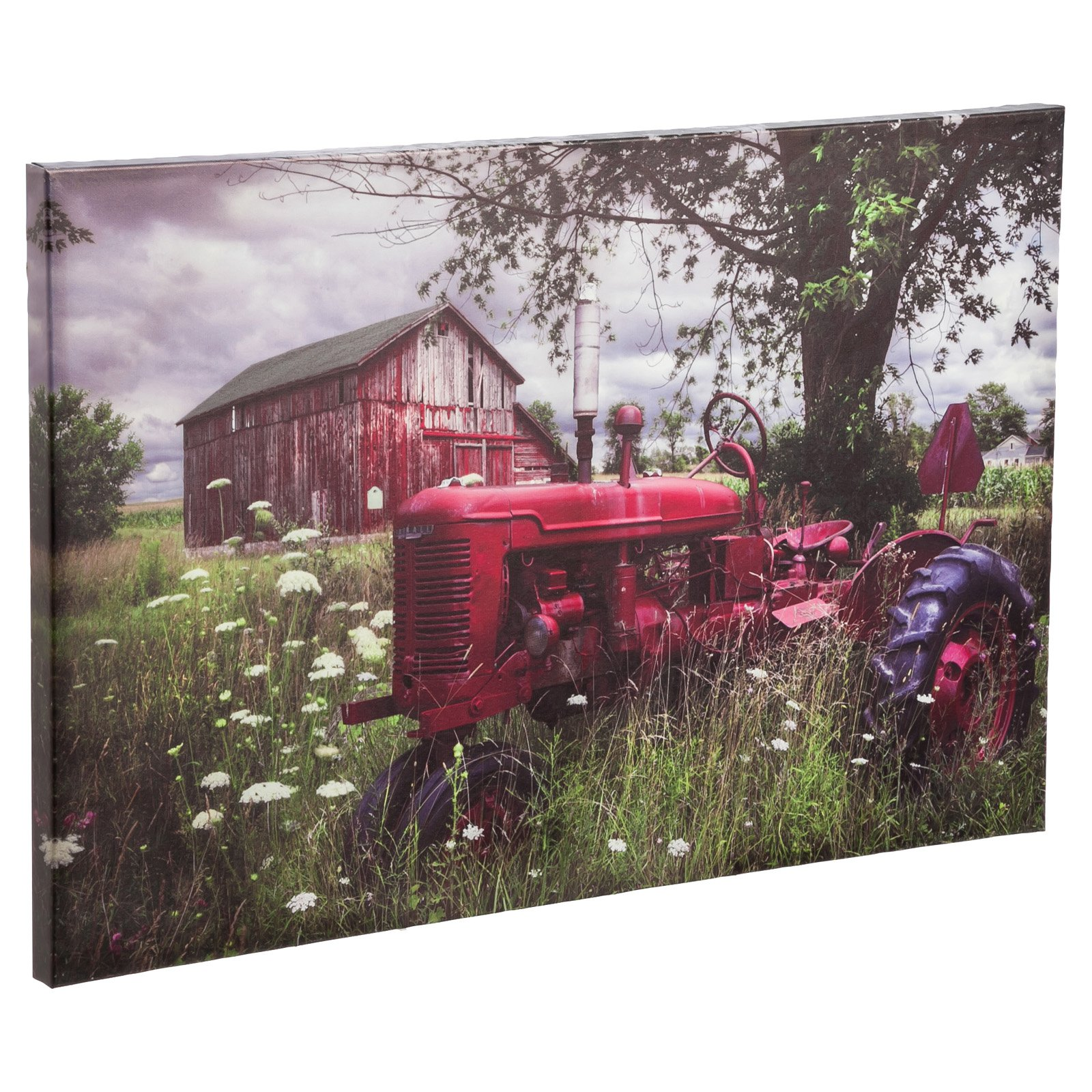 Evergreen Enterprises Reds in the Picture Outdoor Wall Canvas Art