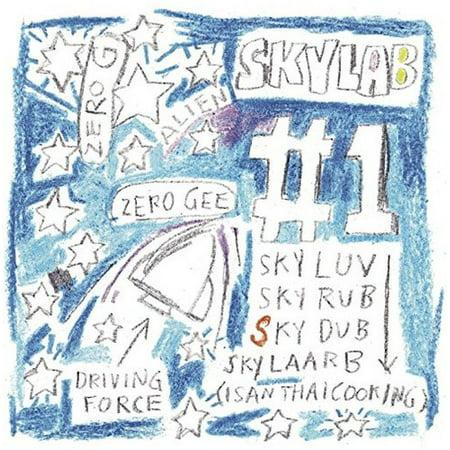 Skylab #1 (Von Zipper Skylab)