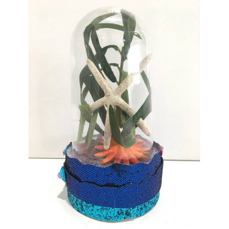 Beach Seashore Theme Starfish Plastic Dome Cake Topper Centerpiece All Occasions Birthday Sweet 16 Wedding 7