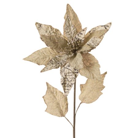 Pack of 12 Artificial Gold, Beige and Black Burlap Christmas Poinsettia Stem with Script 29