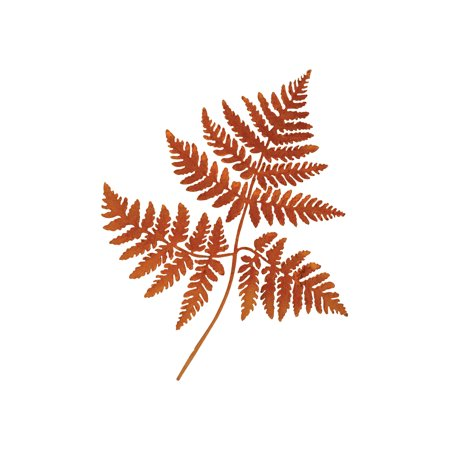 Elegant Garden Design Metal Ferns 3-D Wall Art - Bendable Rusty Finish Frond Sculpture - Home and Office Decor