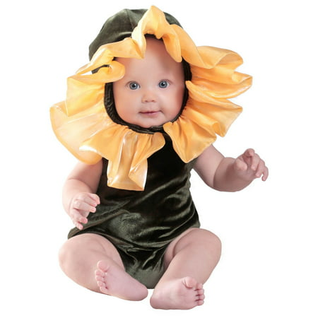 Anne Geddes Flower Baby Costume