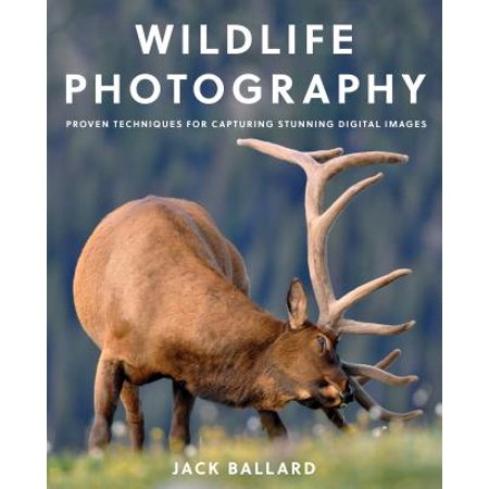 Wildlife Photography : Proven Techniques for Capturing Stunning Digital