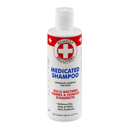 Remedy Recovery Medicated Shampoo For Dogs  8 0 Fl Oz