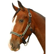 Intrepid 126102G Breakaway Halter Leather Crown Padded for Horse, Green & Silver - Cob