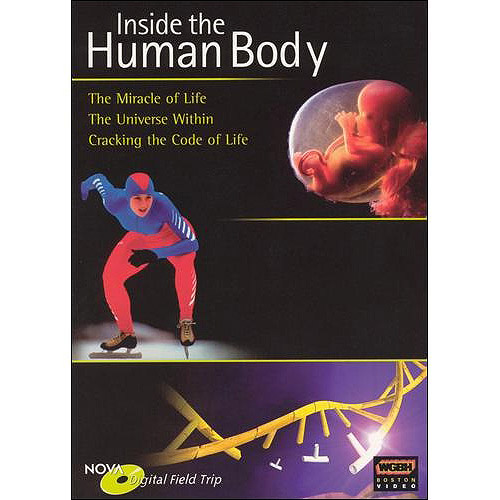NOVA Field Trips: Inside The Human Body