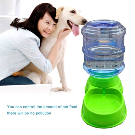 Food Dispenser For Dogs At Walmart