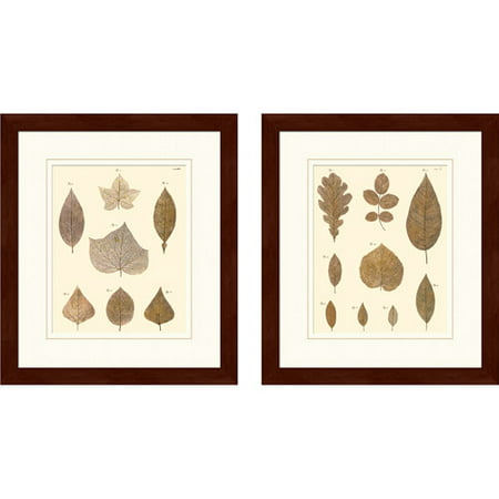 """Fall Leaves"" Framed Art, Set of 2"