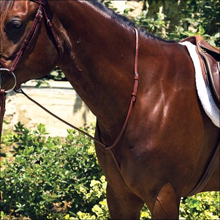 PROFESSIONAL PONY RAISED STANDING HORSE MARTINGALE BY PERRIS LEATHER