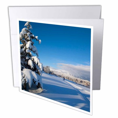 3dRose Cross country skiing at Whitefish, Montana, USA - US27 CHA1952 - Chuck Haney, Greeting Cards, 6 x 6 inches, set of 12