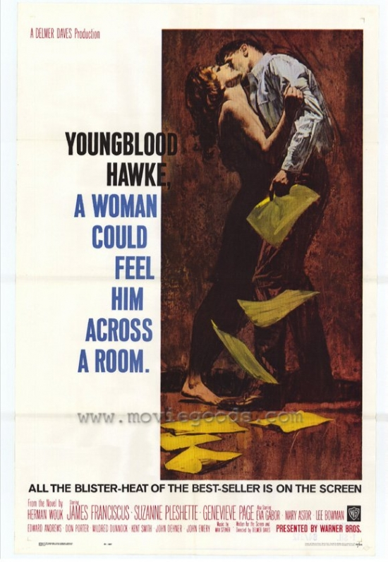 Youngblood Hawke Movie Poster (11 x 17) by Pop Culture Graphics