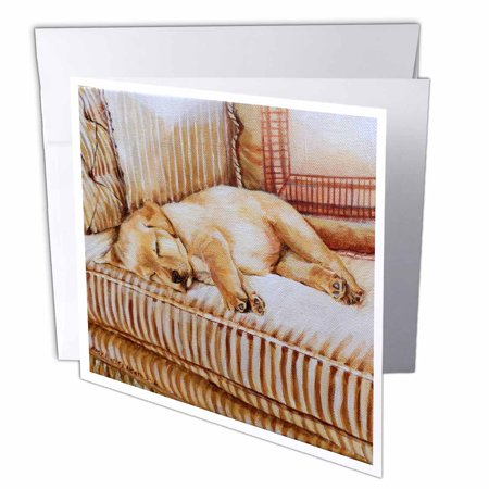 3dRose Little Yellow Lab Puppy Sleeping In The Sun On A Golden Striped Couch, Greeting Cards, 6 x 6 inches, set of