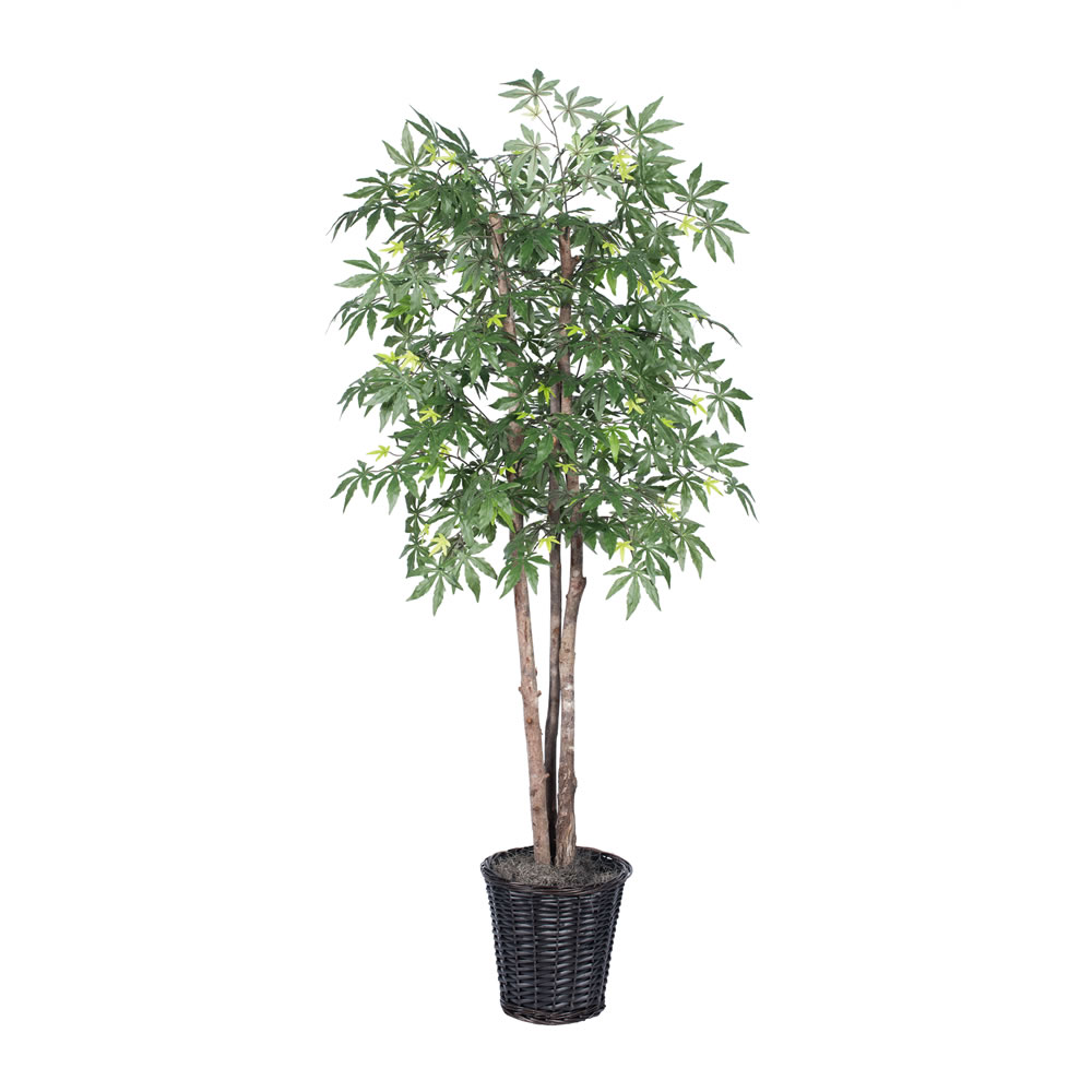 Vickerman 6' Artificial Japanese Maple Deluxe Set in Rattan Basket