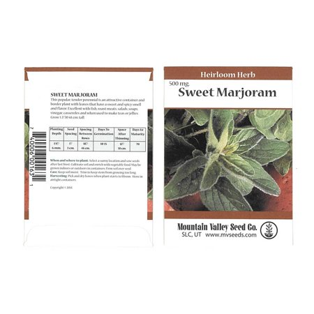 Sweet Marjoram Herb Garden Seeds - 500 mg Packet - Non-GMO, Heirloom Culinary Herbal Gardening Seeds - Annual