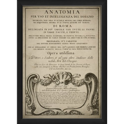 The Artwork Factory Anatomia Framed Graphic Art by Blueprint Artwork