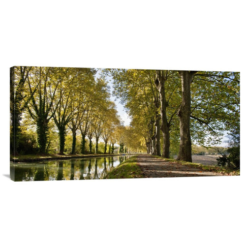 Global Gallery 'Trees Growing by River in Park' by Howard Kingsnorth Photographic Print on Wrapped Canvas