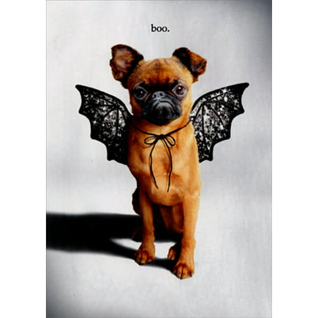 Avanti Press Trick Or Treat Dog With Bat Wings Funny Halloween Card - Halloween Bat Treats