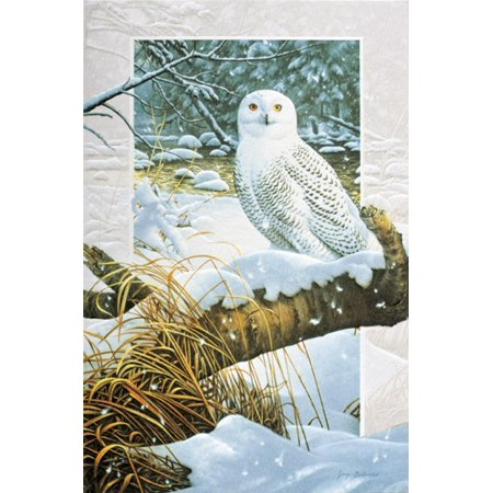 Pack of 16 snowy owl fine art embossed deluxe christmas greeting pack of 16 snowy owl fine art embossed deluxe christmas greeting cards m4hsunfo
