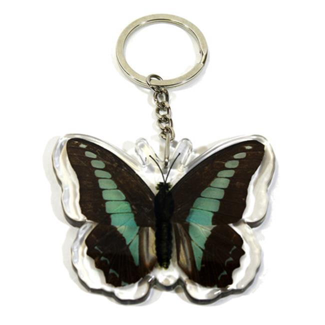 Ed Speldy East Company BTK105 Real Bug Common Blue Bottle Butterfly Key Chain