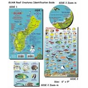 Guam Reef Fish and Creature Guide