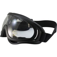 3ad64b655ed Product Image Birdz Flycatcher Motorcycle Goggles Dirt Bike Goggles  Motorcycle Glasses Grip For Helmet