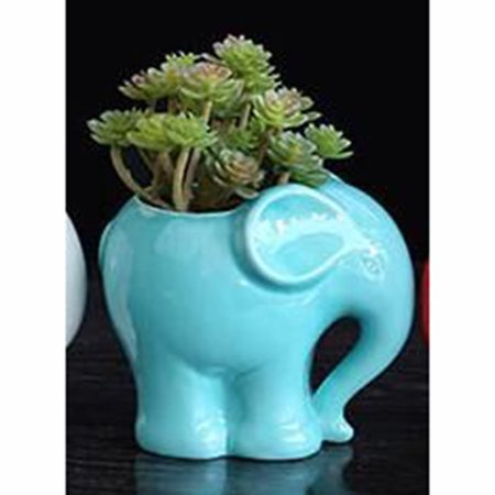 Ceramic Flower pot Elephant Succulent Planter Cactus Succulent Plants Flower Cute White Pot ()