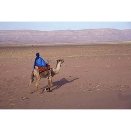 Man in Traditional Dress Riding Camel Morocco Canvas Art - John & Lisa Merrill  DanitaDelimont (35 x 24) for $<!---->