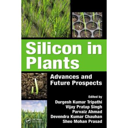 Silicon In Plants  Advances And Future Prospects