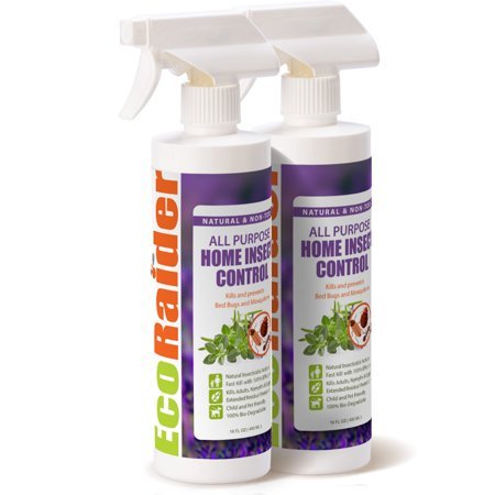 EcoRaider All Purpose Insect Killer (16oz) , Fast Kill & Lasting Prevention, Natural & (Best Powder To Kill Bed Bugs)