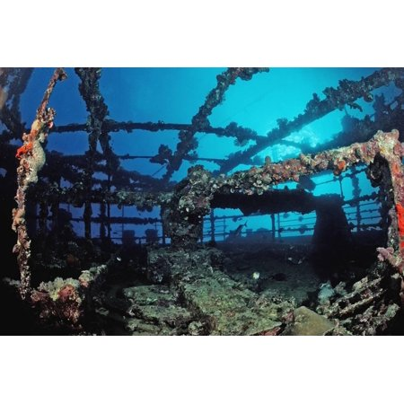 Scuba Diver Diving on Umbria Shipwreck, Sudan, Africa, Red Sea, Wingate Reef Print Wall Art By Reinhard Dirscherl ()