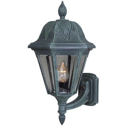 Special Lite Products Floral 1-Light Outdoor Sconce