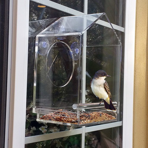 Vandue Corporation OnDisplay Window 10 in x 8 in x 5 in Birdhouse by Vandue