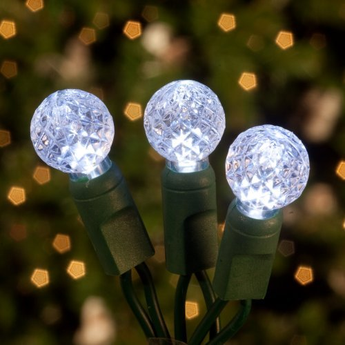 Commercial 70 ct. White Raspberry LED Light Set with Green Wire 6 in. Spacing (Case)